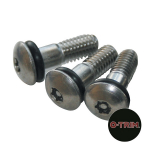 Pack of 10 Replacement Wheel Trim security screws